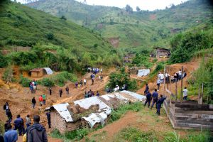 CFTI 2013 Congo Visit